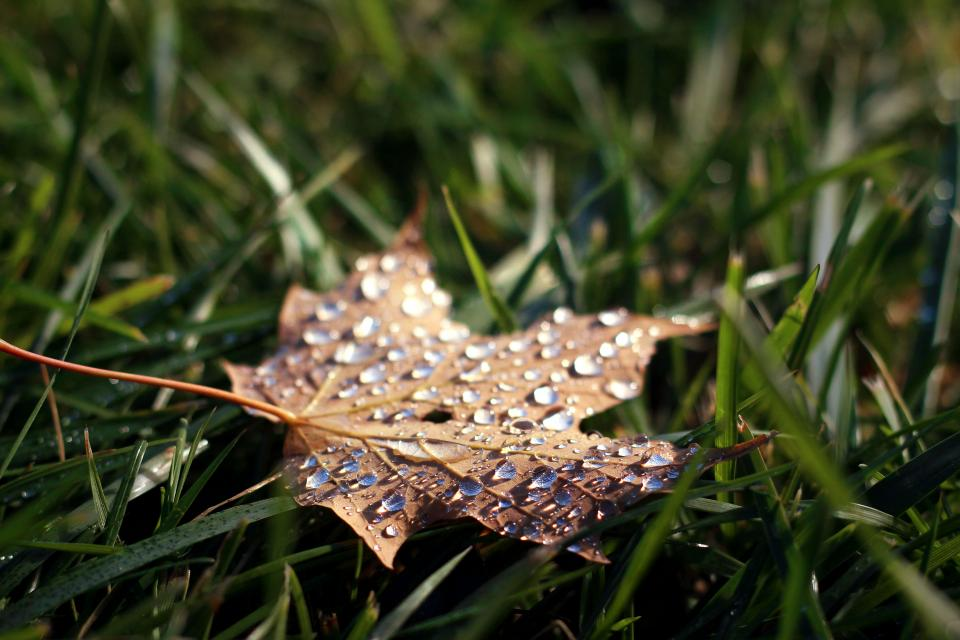 Prepping your Calgary home for Fall and Winter