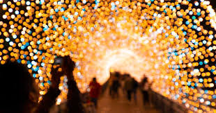 Things to do in Calgary the week of December 9th to December 16th 2019